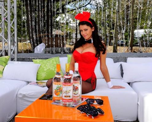 Playboy Bunny and Stolichnaya Vodka product image