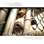 Humane Society Advertisement